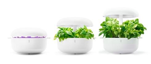 Joululahjaksi Plantui Smart Garden